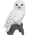 Beeldjes sneeuwuil vogeltjes 27 cm