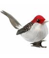 Bloemschik decoratie vogels rood